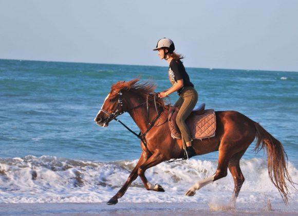 UAE Horse Riding